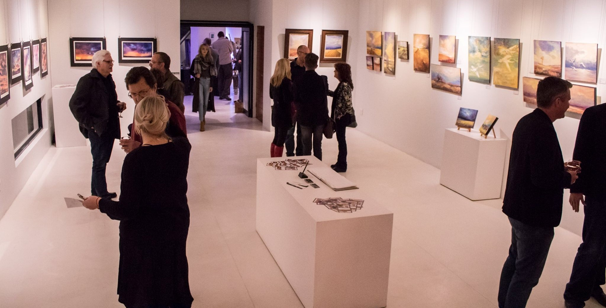 Opening night of Nests in the Clouds art exhibition at Gallery on Leviseur in Bloemfontein
